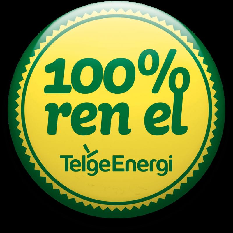 100-ren-el-telge-energi