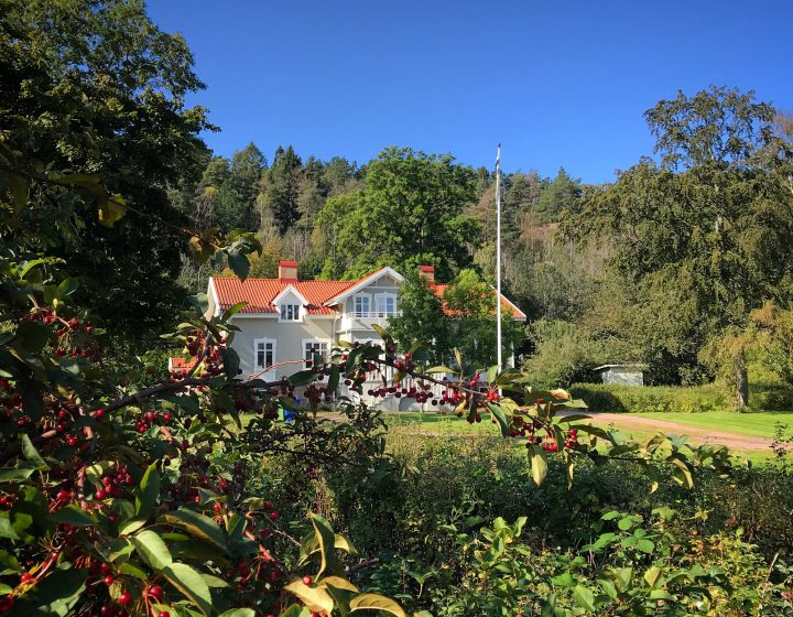 Hoest 2019 Praestgarden Pedagogen Park